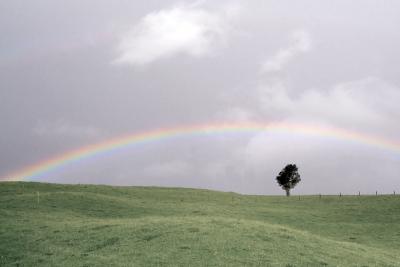 虹 岡 雨上がり