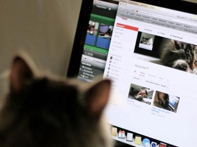 Youtube視聴