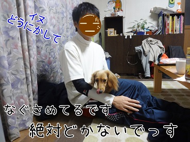 DSC01755.jpg