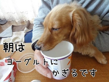 KINAKO149.jpg
