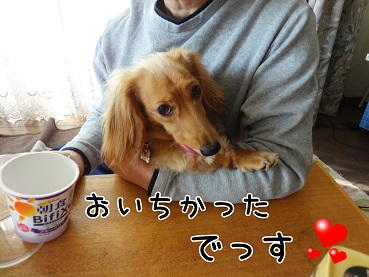 KINAKO151.jpg