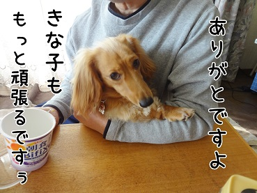 KINAKO153.jpg