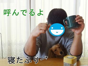 kinako10.jpg
