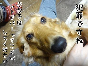 kinako106.jpg