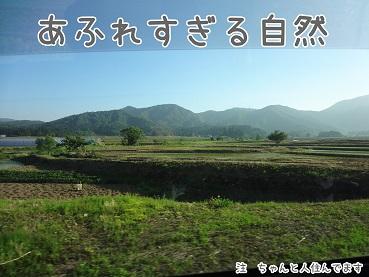 kinako140.jpg