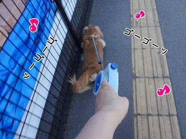 kinako141.jpg