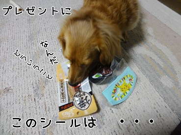 kinako162.jpg