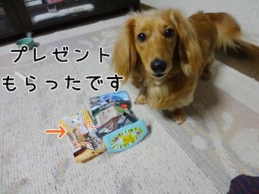 kinako166.jpg