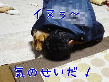 kinako170.jpg