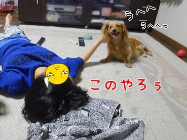 kinako174.jpg