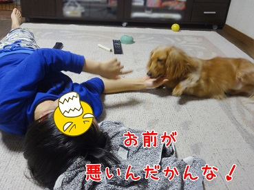 kinako175.jpg