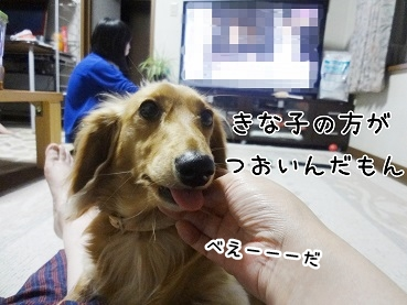 kinako178.jpg