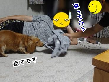 kinako182.jpg