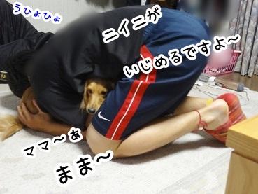 kinako186.jpg