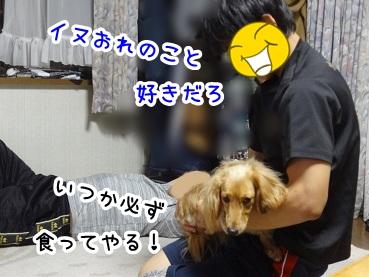 kinako187.jpg