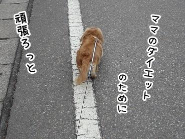 kinako200.jpg