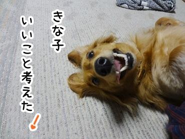 kinako217.jpg