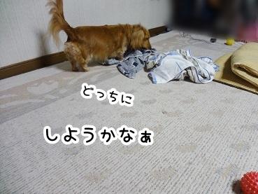 kinako267.jpg