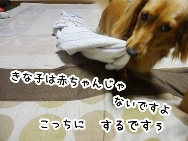 kinako270.jpg