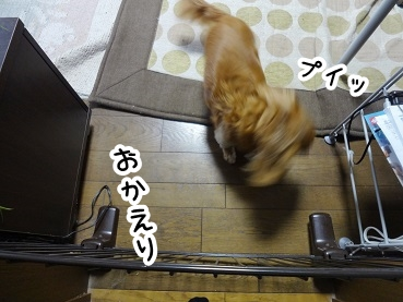 kinako272.jpg