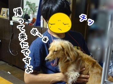 kinako275.jpg