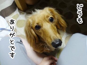 kinako289.jpg