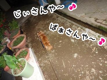 kinako290.jpg