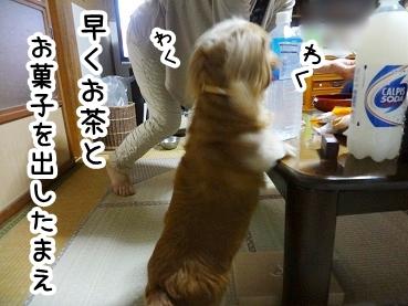 kinako292.jpg