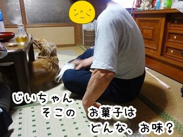 kinako293.jpg