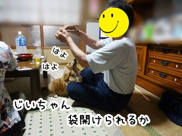 kinako294.jpg