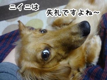 kinako312.jpg