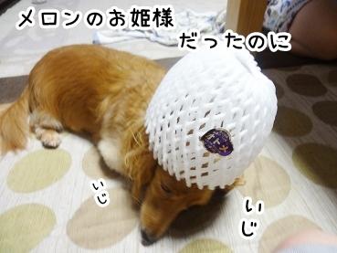 kinako319.jpg