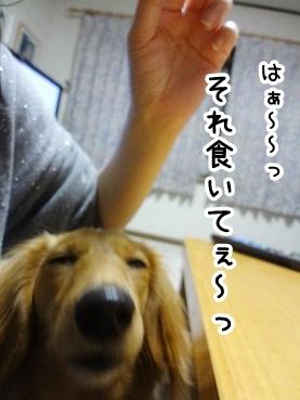 kinako339.jpg