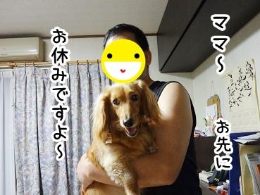 kinako340.jpg