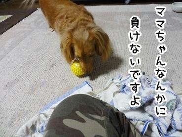 kinako345.jpg