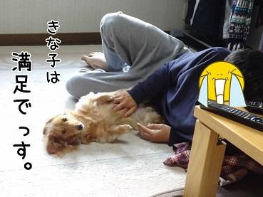 kinako35.jpg