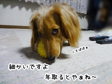 kinako350.jpg