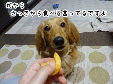 kinako365.jpg