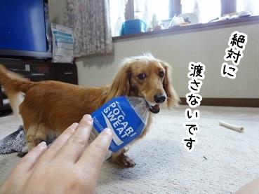 kinako379.jpg
