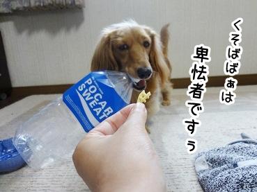 kinako381.jpg