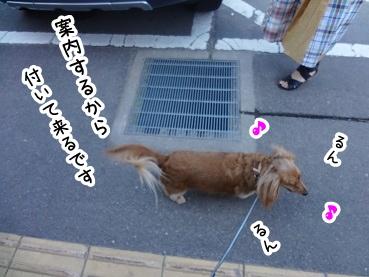 kinako402.jpg