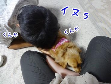 kinako409.jpg
