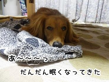 kinako442.jpg