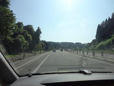 kinako444.jpg
