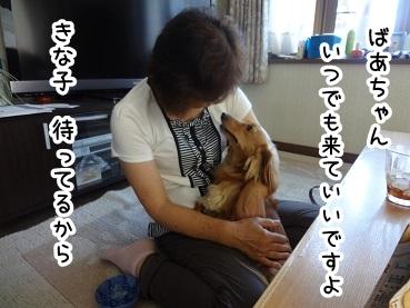 kinako454.jpg