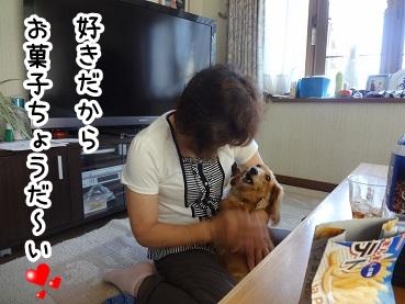 kinako455.jpg