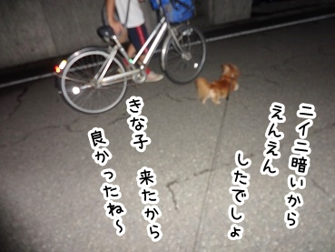 kinako467.jpg