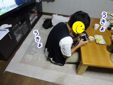 kinako501.jpg