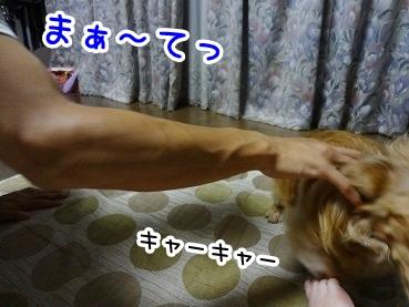 kinako507.jpg