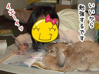 kinako510.jpg